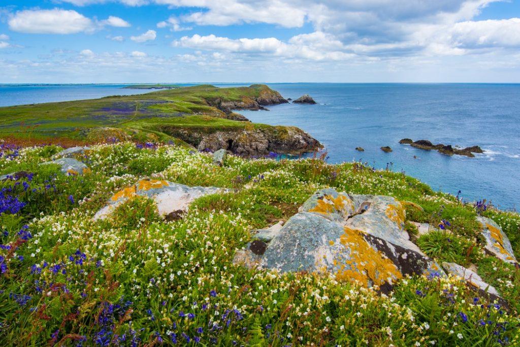 Landschap Ierland